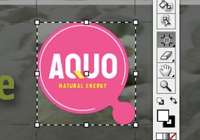 Adobe Illustrator CS3 *